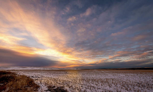Photograph - Sunrise Over The Stubble by Philip Rispin