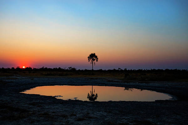 Photograph - Sunrise Over The Watering Hole by John Rodrigues
