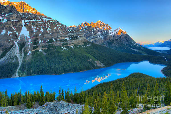 Photograph - Sunrise Reflections In Peyto Lake by Adam Jewell