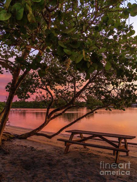 Photograph - Sunrise Seating by Karin Pinkham