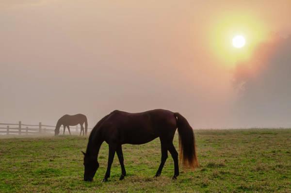 Photograph - Sunrise - Widener Farm Whitemarsh by Bill Cannon