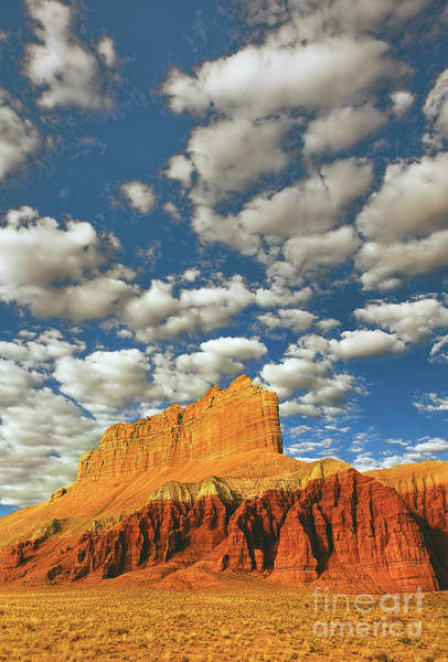 Photograph - Sunrise Wild Horse Butte Goblin Valley Utah by Dave Welling
