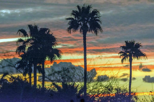 Photograph -  Sunset 3832-020419 by Tam Ryan