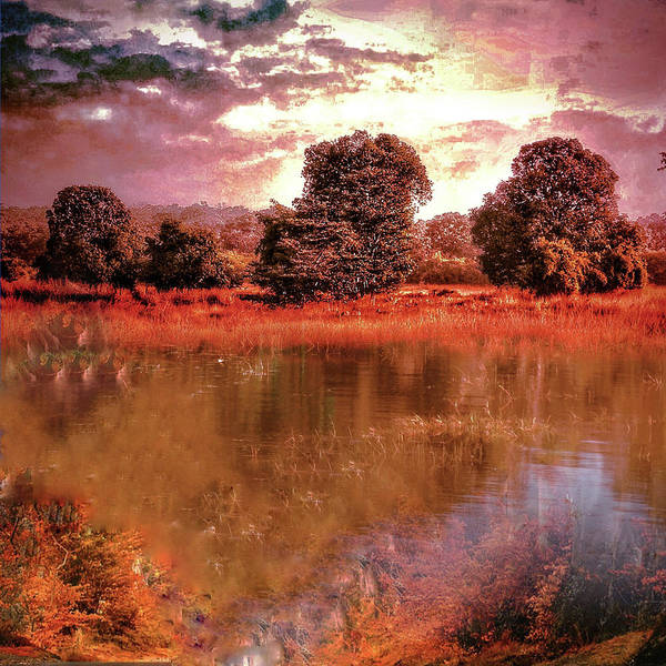 Photograph - Sunset by AE collections