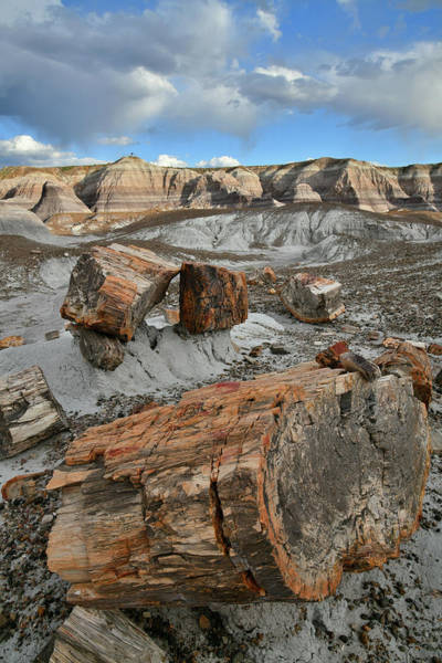 Photograph - Sunset At Blue Mesa In Petrified Forest by Ray Mathis