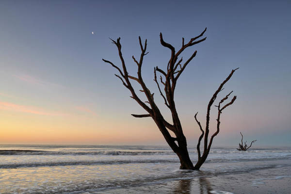 Photograph - Sunset At Botany Bay by Jon Glaser
