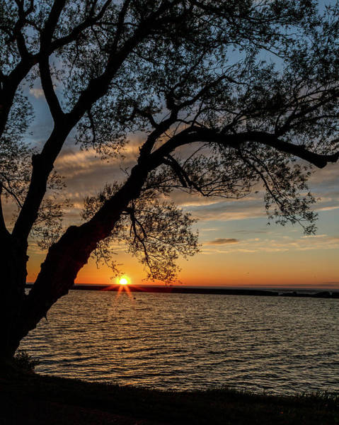 Photograph - Sunset At Breitbeck Park by Rod Best