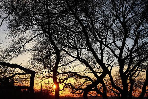 Photograph - Sunset At Greenwich Park, London, England by Aidan Moran