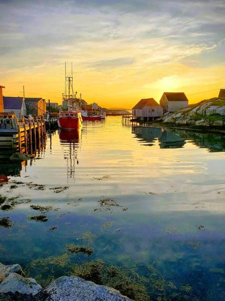 Wall Art - Photograph - Sunset At Peggy's Cove by Jenny Hastings-James