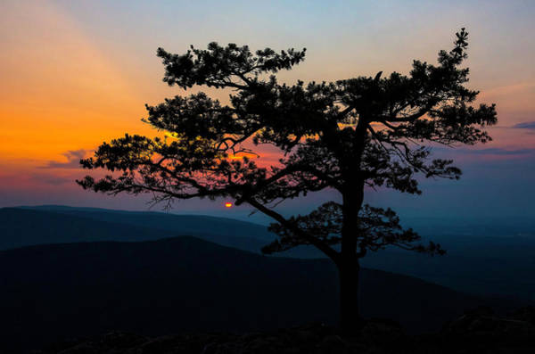 Photograph - Sunset At Ravens Roost by Greg Reed