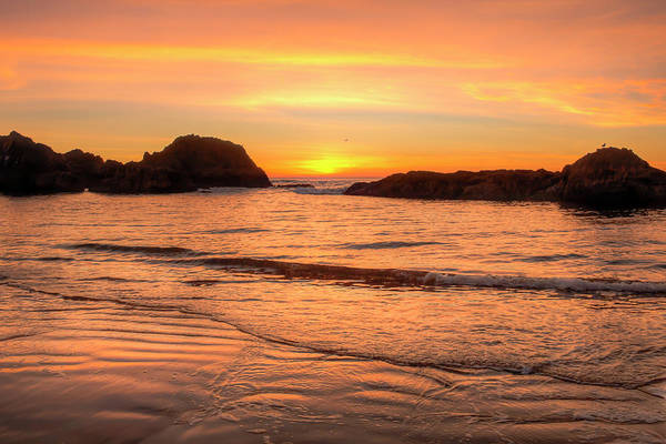 Wall Art - Photograph - Sunset At Seal Rock 00997 by Kristina Rinell