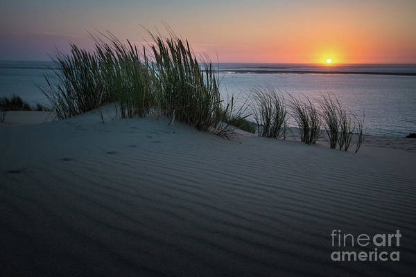Photograph - Sunset At The Dunes by Hannes Cmarits