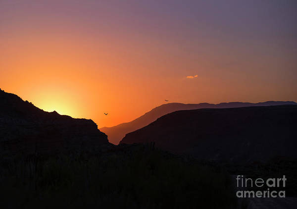 Wall Art - Photograph - Sunset At Zion by Diane Diederich