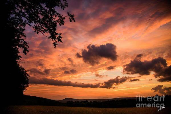 Photograph - Sunset Beauty by Alana Ranney