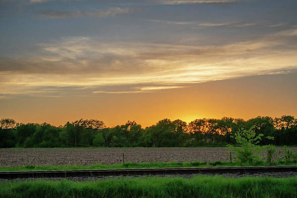 Wall Art - Photograph - Sunset Behind The Trees - Color by Michael Paris - Photography