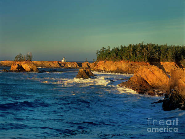 Photograph - Sunset Cape Arago Lighthouose Oregon Coast by Dave Welling
