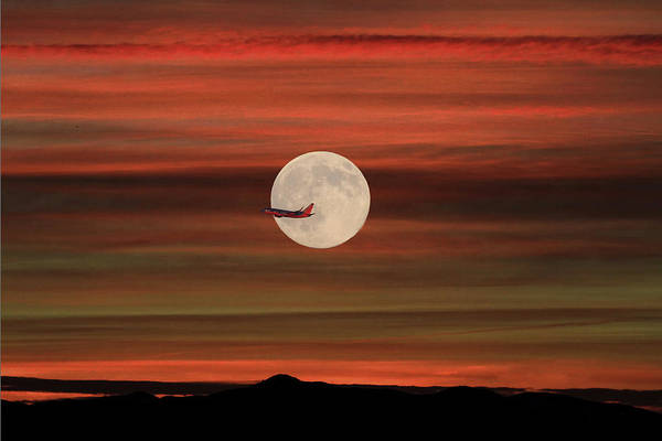 Wall Art - Photograph - Sunset Flight With Full Moon by Donna Kennedy