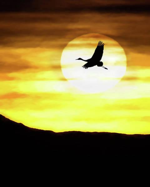 Sunset Flyway Art Print
