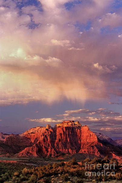 Photograph - Sunset Highlights The Clouds West Temple Zion National Park Utah by Dave Welling