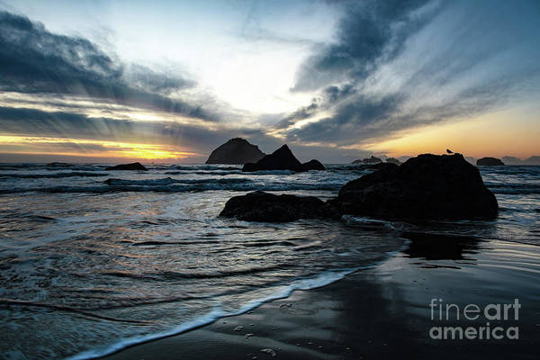Wall Art - Photograph - Sunset In Autumn At The Oregon Coast by Jackie Follett