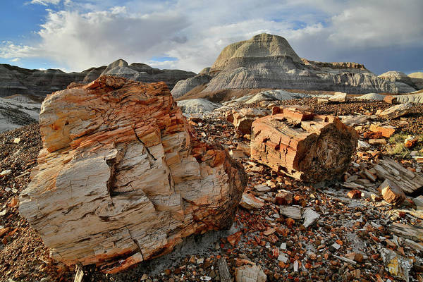 Photograph - Sunset In Blue Mesa Basin In Petrified Forest by Ray Mathis