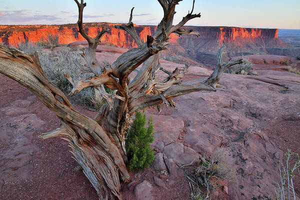 Photograph - Sunset In Canyonlands From Green River Overlook by Ray Mathis