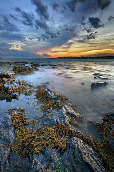 Photograph - Sunset In Kettle Cove by Rick Berk