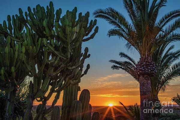 Photograph - Sunset In Mallorca, Spain by Lyl Dil Creations