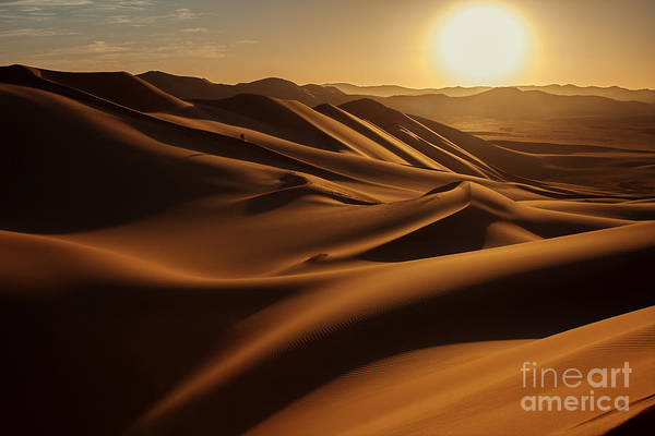 Wall Art - Photograph - Sunset In Sahara Desert by Anna Gibiskys