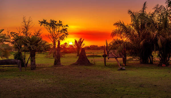 Wall Art - Digital Art - Sunset In The Pantanal by Pravine Chester