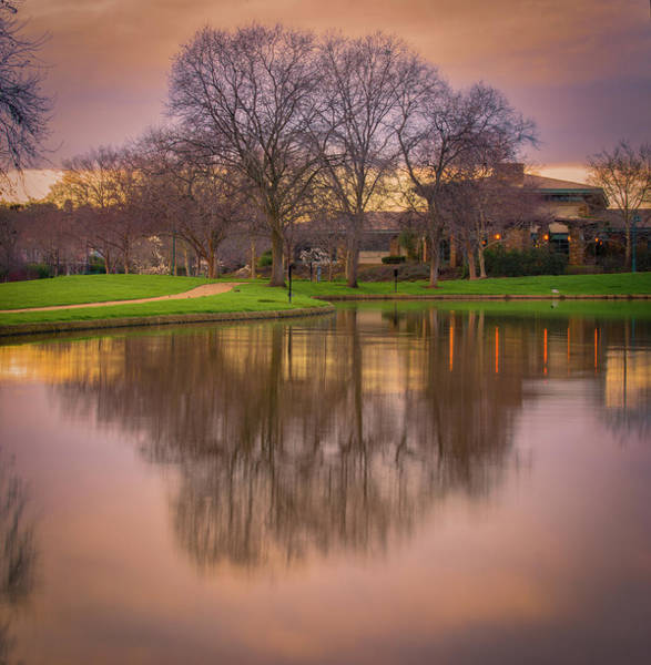 Photograph - Sunset In The Park by Jonathan Hansen