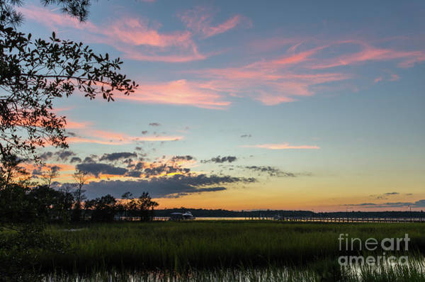 Photograph - Sunset In The Reeds by Dale Powell