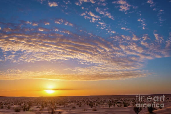 Wall Art - Photograph - Sunset In The Sahara by Delphimages Photo Creations