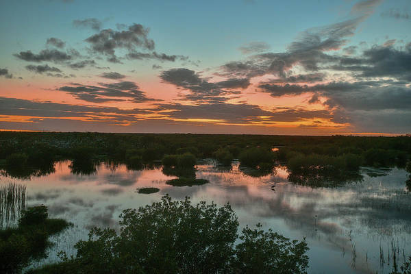 Photograph - Sunset In Thousand Islands Everglades by Dan Friend