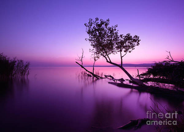 Wall Art - Photograph - Sunset Lake. This Photo Make In by Hofhauser