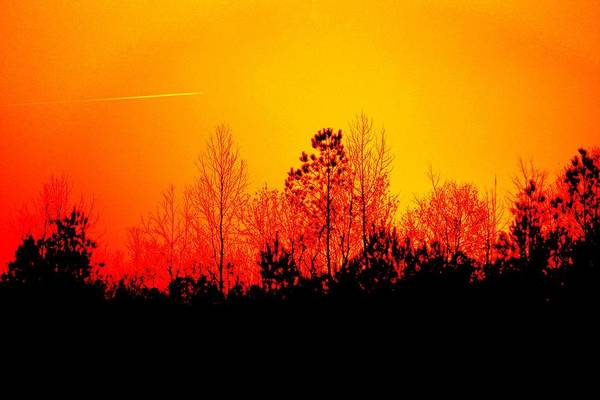 Photograph - Sunset Landscape by Cynthia Guinn