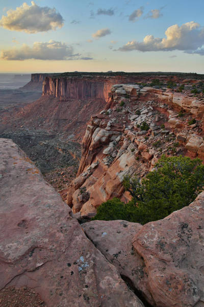 Photograph - Sunset Lights Orange Cliffs In Canyonlands by Ray Mathis