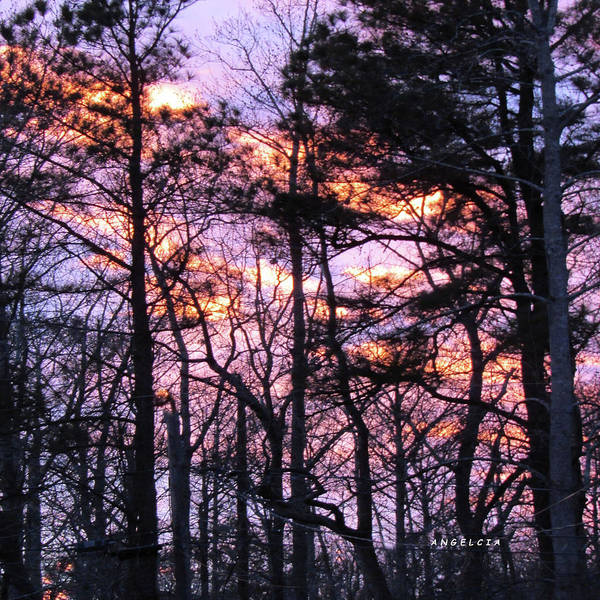 Photograph - Sunset Memories by Angelcia Wright