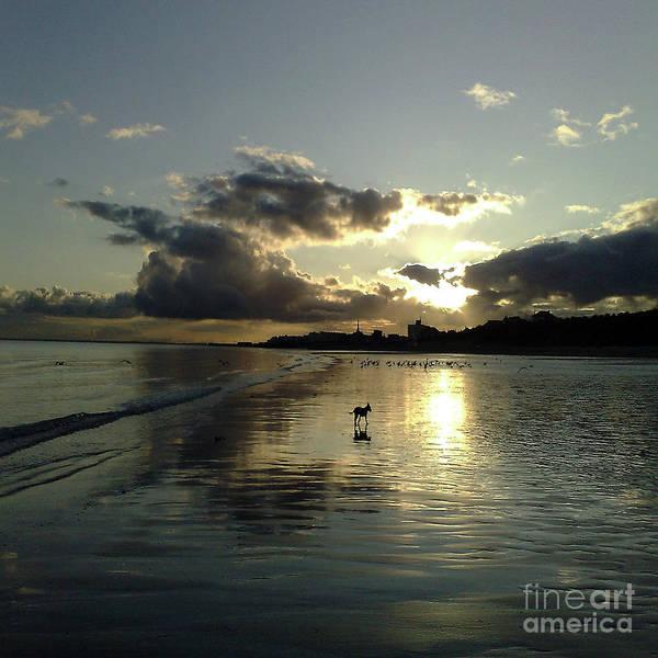Wall Art - Photograph - Sunset by Merice Ewart