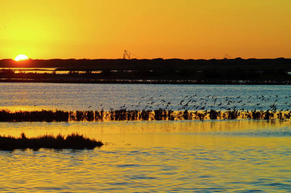 Photograph - Sunset On Copano Bay by Adam Reinhart