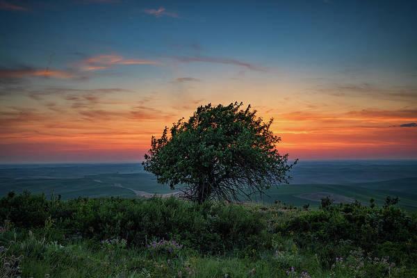 Photograph - Sunset On Steptoe Butte by Rick Berk