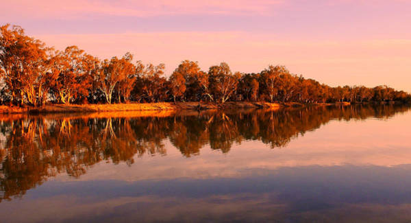 Photograph - Sunset On The Murray River by Lexa Harpell