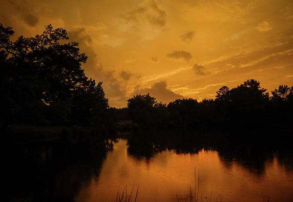 Photograph - Sunset Over A Pond by Philip Rispin