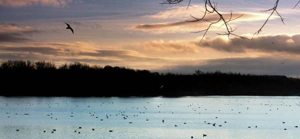Photograph - Sunset Over Kings Mill Reservoir by Scott Lyons