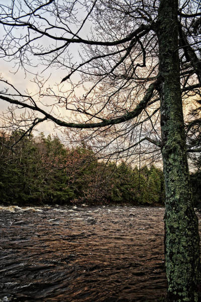 Photograph - Sunset Over Raquette River by Maggy Marsh