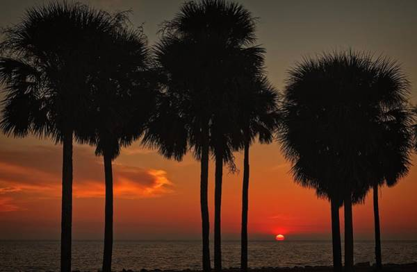 Photograph - Sunset Over The Gulf by Ronald Lutz