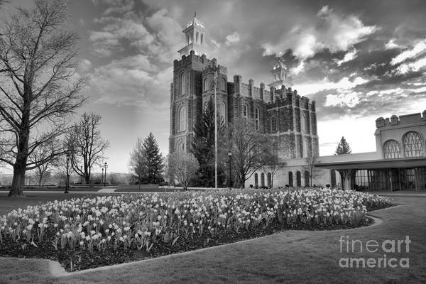 Photograph - Sunset Over The Logan Utah Temple Black And White by Adam Jewell