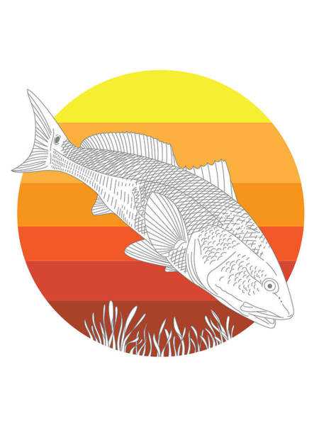 Redfish Digital Art - Sunset Redfish by Kevin Putman