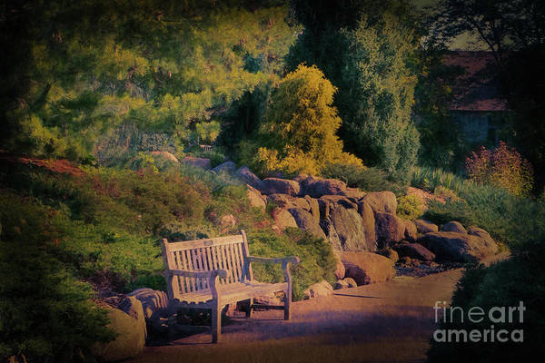 Photograph - Sunset Serenade by Marilyn Cornwell