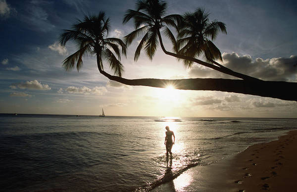 Barbados Photograph - Sunset Silhouette On Turtle Beach by Holger Leue